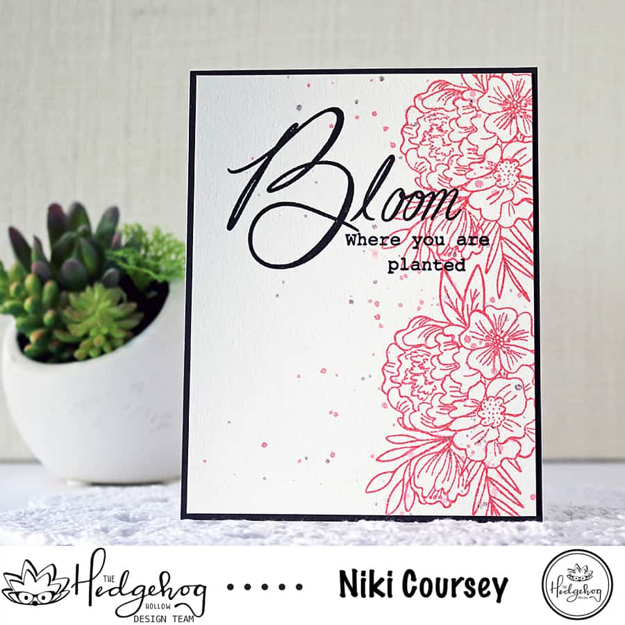 Beautiful Coral Blooms & Video, featuring the September Subscription Box from the Hedgehog Hollow